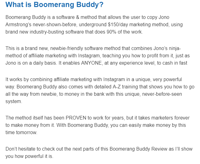 What is Boomerang Buddy
